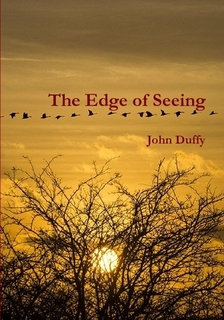 The Edge of Seeing possible cover