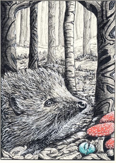 spell woods