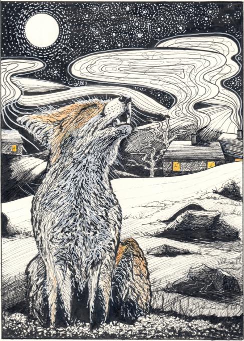 wolf stella